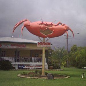BigCrab_Cardwell